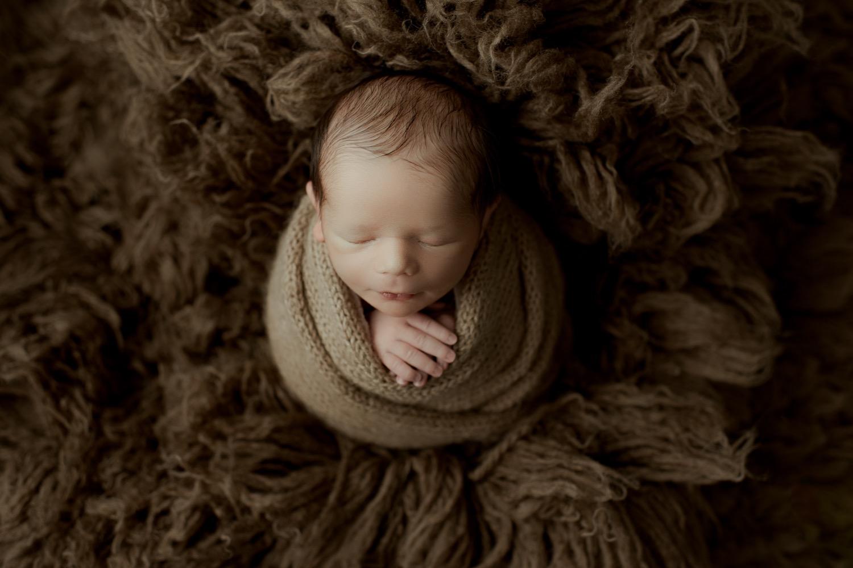 Baby Maverick